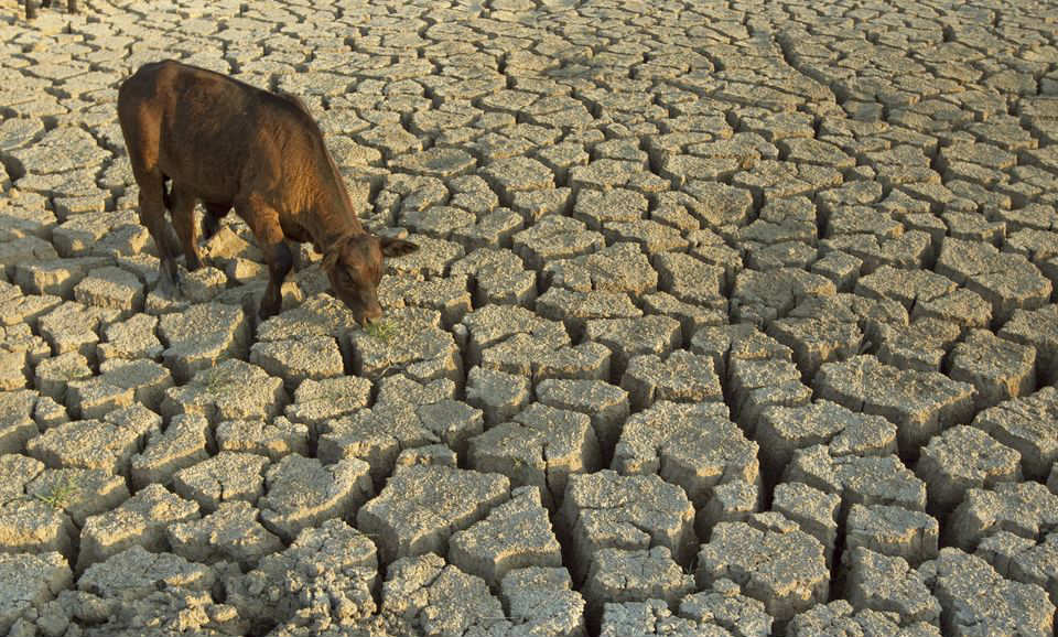 Scientists warn of Megadrought in US