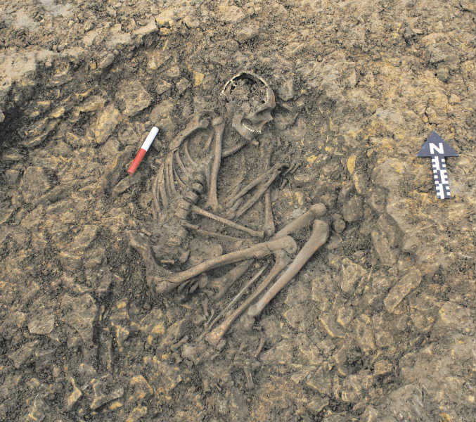 Archaeologists unearth human skeleton of Iron Age in Odisha
