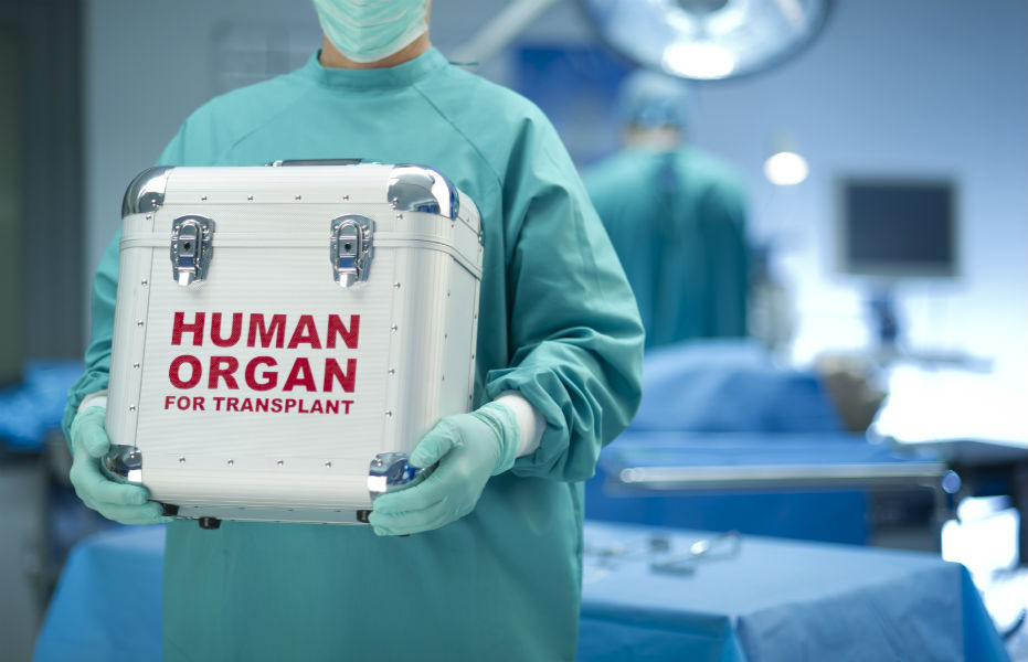 Apollo doctors transplant 23 organs from five dead bodies in 36 hours