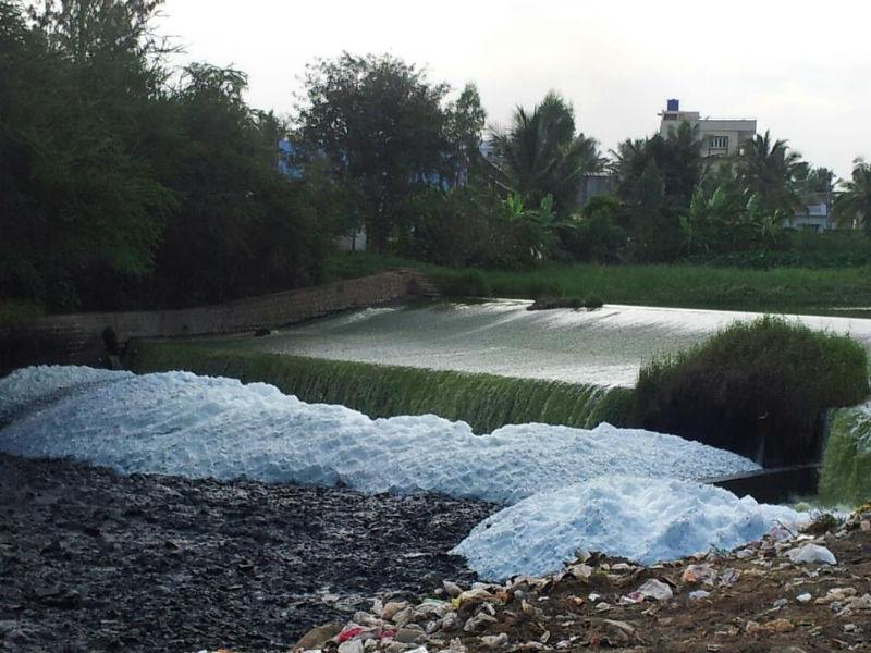 Bellandur Lake in Bangaluru catches fire due to industrial effluents