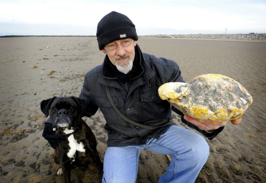 Whale vomit 'Ambergris' sold for whopping $16,700