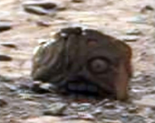 goblin on mars The TeCake
