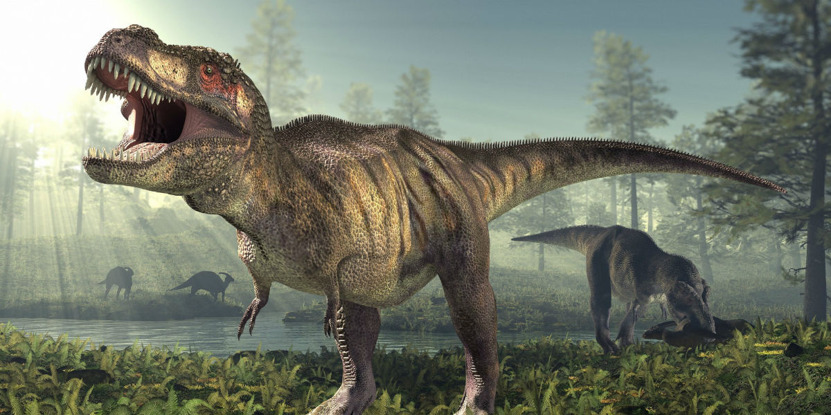 Scary T-Rex was cannibal who ate its own species!