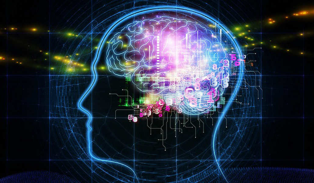 Decoded: Here's how our brain stores so much data and works efficiently