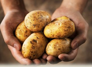 High potato intake ups the risk of Hypertension, study