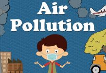 China losing 25 months and India losing 23 months of life due to air pollution, IEA report