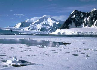 Algae will tell the future of Antarctics ice