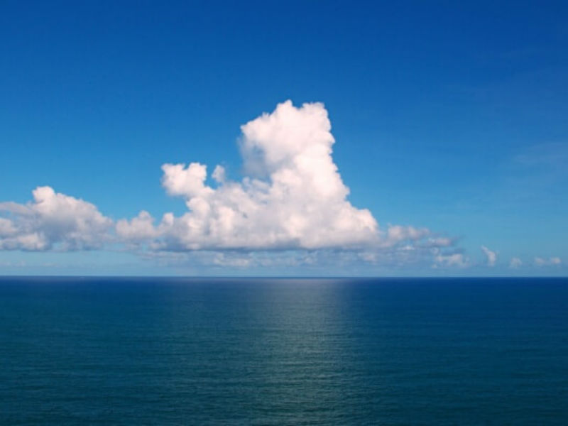 Estimate records more number of known viruses in the World's Ocean