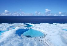 Global warming is killing polarise ice caps: Sea levels of Arctic befall the second-lowest point in history