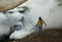 Malaria Free