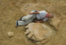 Archaeologists unearthed world's largest dinosaur footprint as big as man