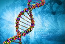 Here's why we cannot prevent hereditary disease from passing to next generation