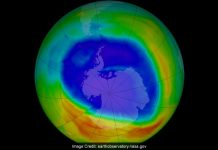 India to take initiative for introducing next-gen refrigeration for lessening the impact of HVCs on Ozone layer