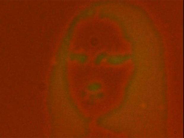 Monalisa by hybrid nanomaterial