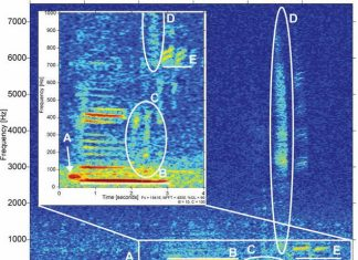 Scientists finally find the source of mysterious sound in Mariana Trench