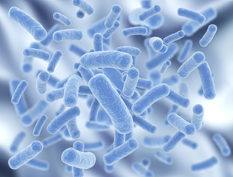 Probiotics: New way to protect us from diseases like colon cancer