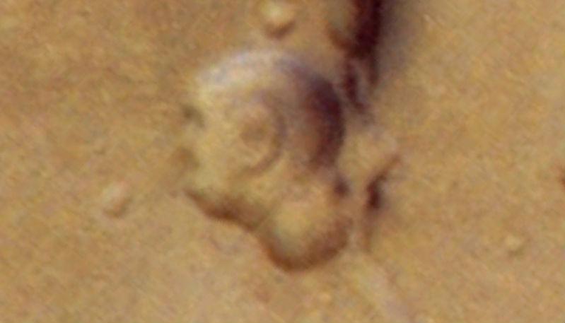 Ancient alien face like Gautam Buddha still exist on Google Mars, See Pic