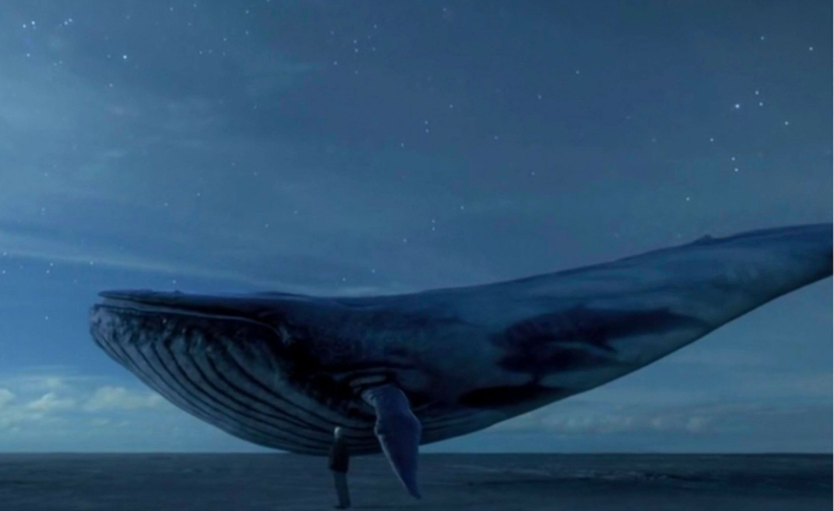 Blue Whale Suicidal game