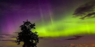 Watch amazing show of northern lights in the night sky