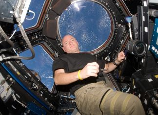 Scott Kally's lifetime discovery of living in space for a year