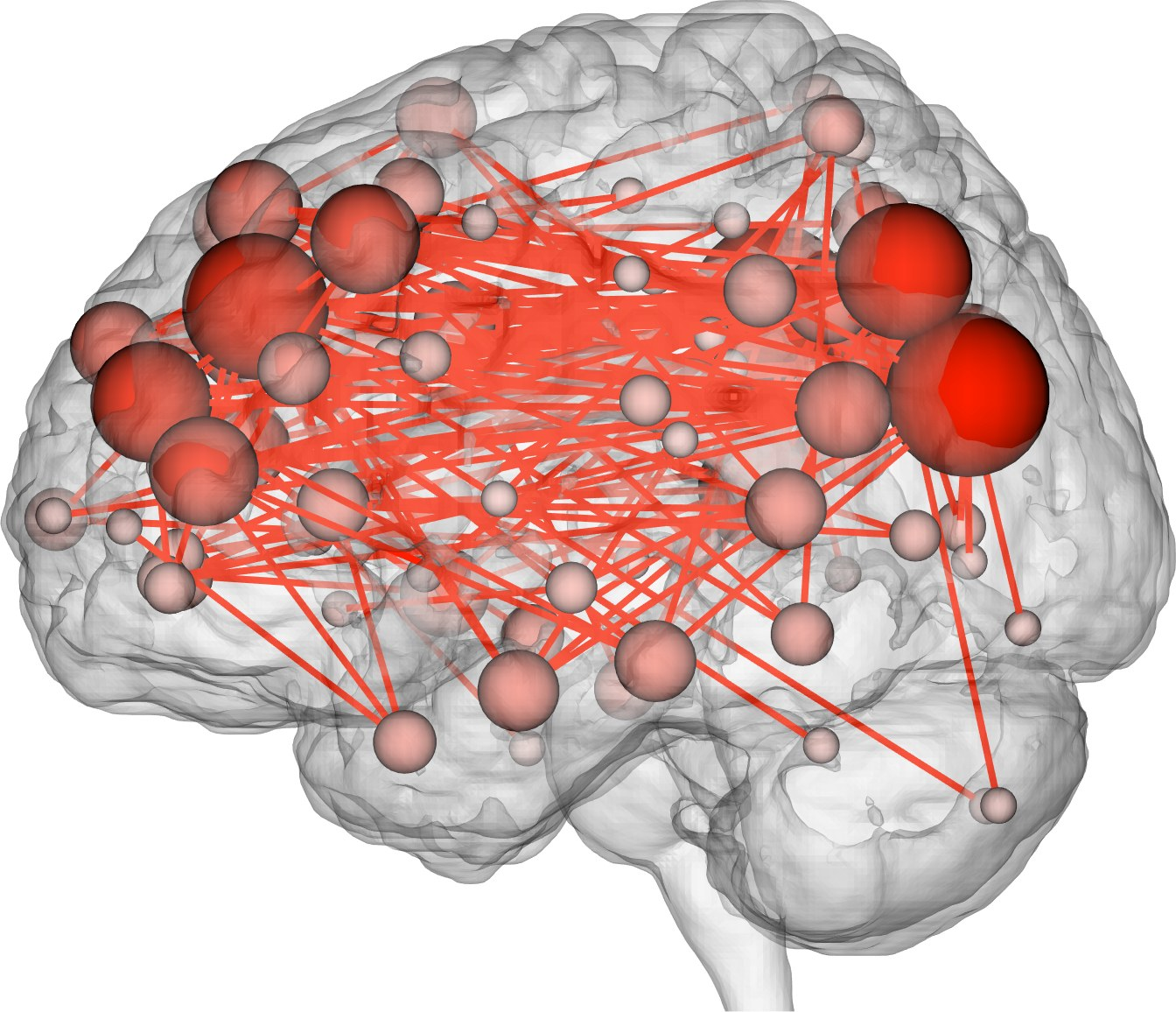 Recent Survey says that Smart People have a Special Social Network in their Brains