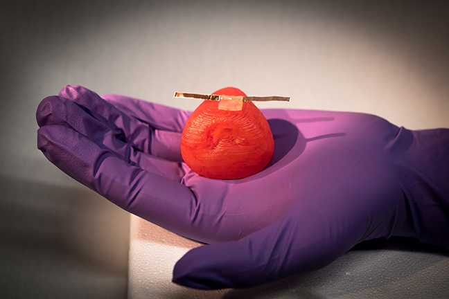 The revolutionary study of 3D-printed organ is promising to bring a vast difference in Medical Science