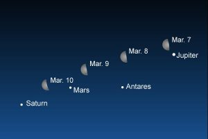A rare and visible celestial alignment of planets will take place from March 7 dubbed as 'Planet Parade'