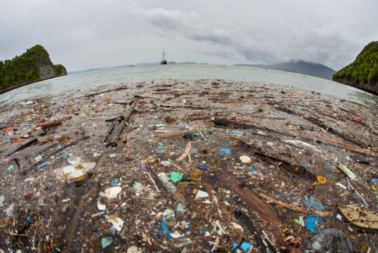 Great Pacific Garbage Patch has grown to the size of three France[s]