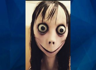 A new suicide-game 'Momo' has gone viral on WhatsApp and Facebook